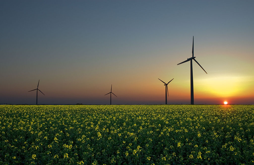 Goodbye Fossil Fuels, Hello Renewable Energy